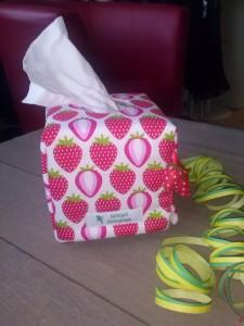 Zewa - Boxen lassen sich gut einkleiden und werden so zu einem tollen Geschenk oder verschönern Ihren Alltag.